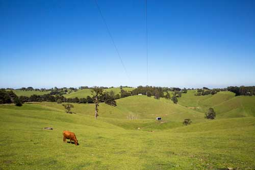 Gippsland landscape – Grand Ridge Road