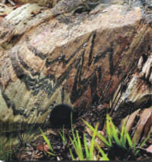A brown rock face showing black sharp chevrons of a different rock type streaking through